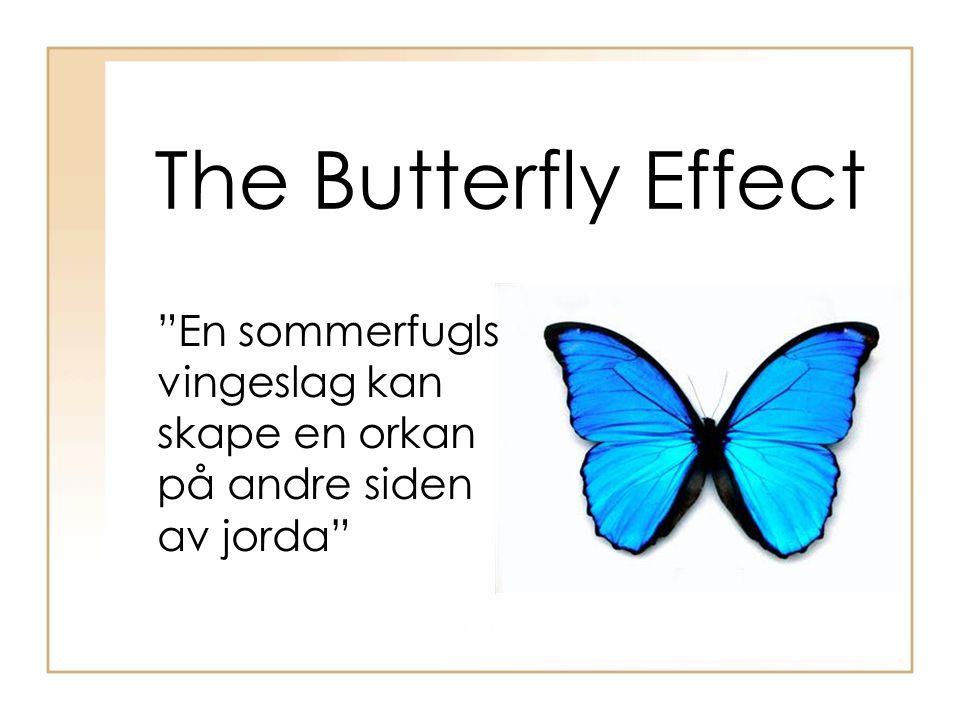 The Butterfly Effect En sommerfugls vingeslag kan skape en orkan på andre siden av jorda
