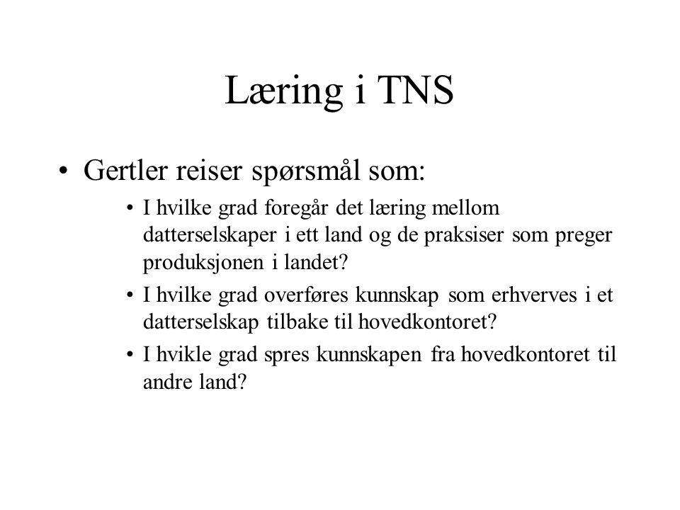 Læring i TNS Gertler reiser spørsmål som: I hvilke grad foregår det læring mellom datterselskaper i ett land og de praksiser som preger produksjonen i landet.