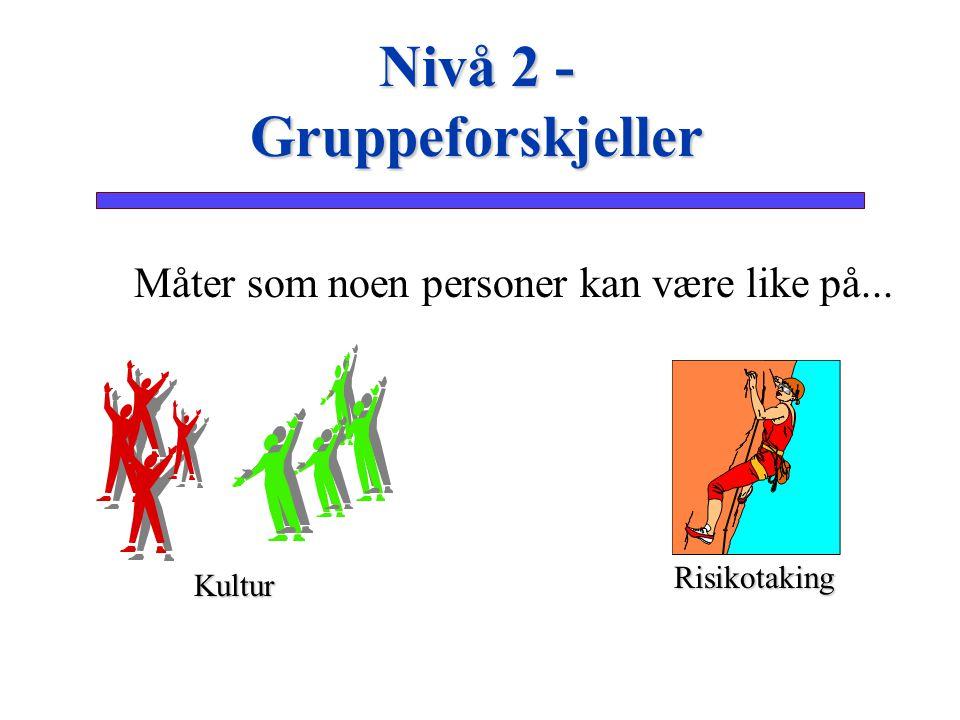 Måter som noen personer kan være like på... Nivå 2 - Gruppeforskjeller Risikotaking Kultur