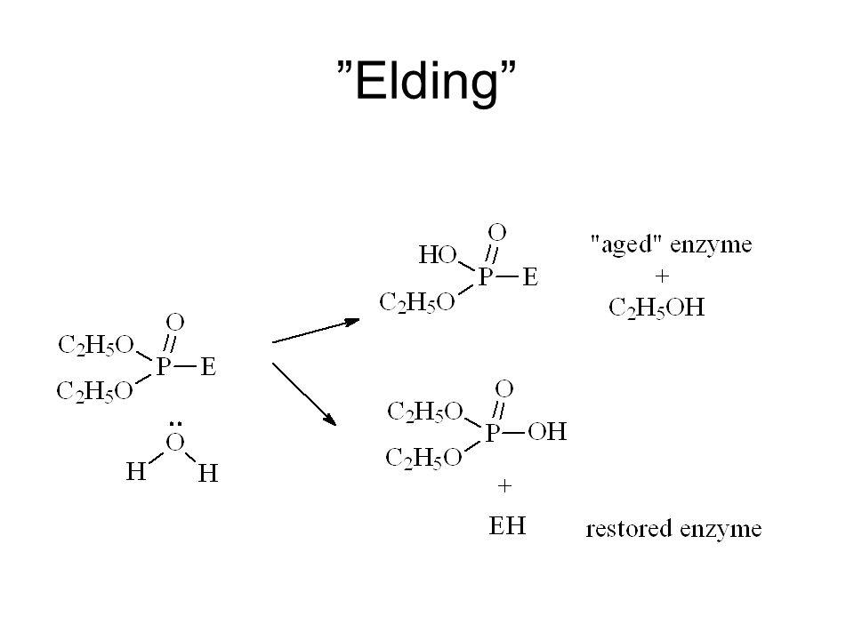 """""""Elding"""""""