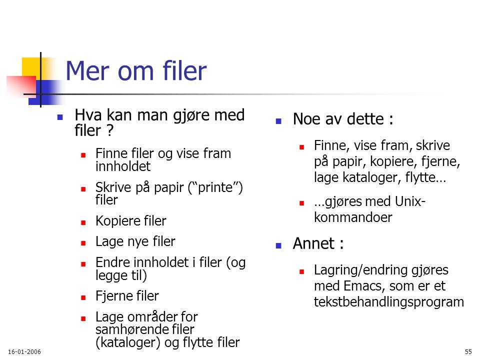 16-01-200655 Mer om filer Hva kan man gjøre med filer .