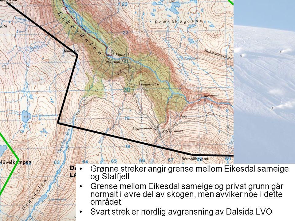 Grønne streker angir grense mellom Eikesdal sameige og Statfjell Grense mellom Eikesdal sameige og privat grunn går normalt i øvre del av skogen, men