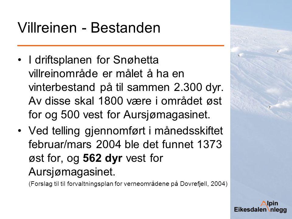 Villreinen - Bestanden I driftsplanen for Snøhetta villreinområde er målet å ha en vinterbestand på til sammen 2.300 dyr. Av disse skal 1800 være i om