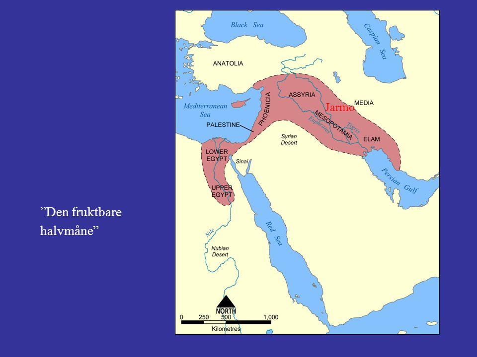 Kjerne i Assur ved Tigris Ekspansjon drevet av jordknapphet Militær overlegenhet
