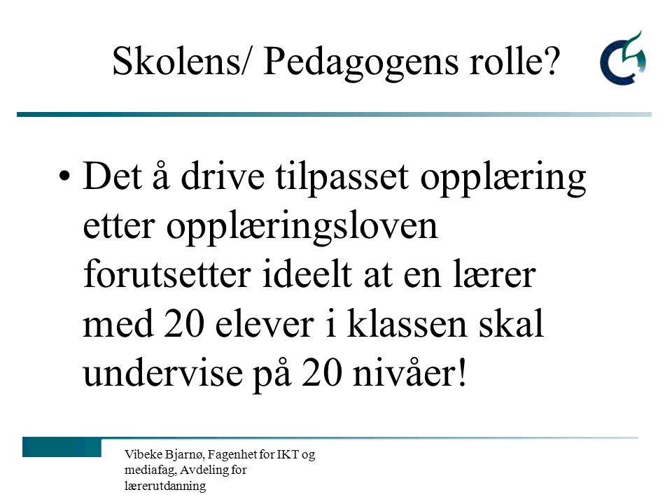 Vibeke Bjarnø, Fagenhet for IKT og mediafag, Avdeling for lærerutdanning Reproduksjon av ulikhet Familie .