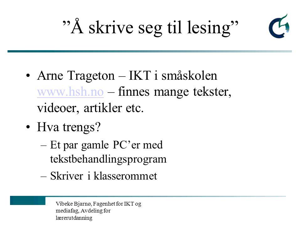 Vibeke Bjarnø, Fagenhet for IKT og mediafag, Avdeling for lærerutdanning Hva har dere hatt.
