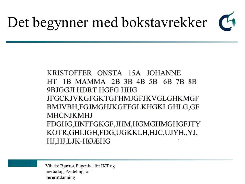 Vibeke Bjarnø, Fagenhet for IKT og mediafag, Avdeling for lærerutdanning IKT ikke som eget fag, men i beste fall et effektivt læremiddel.