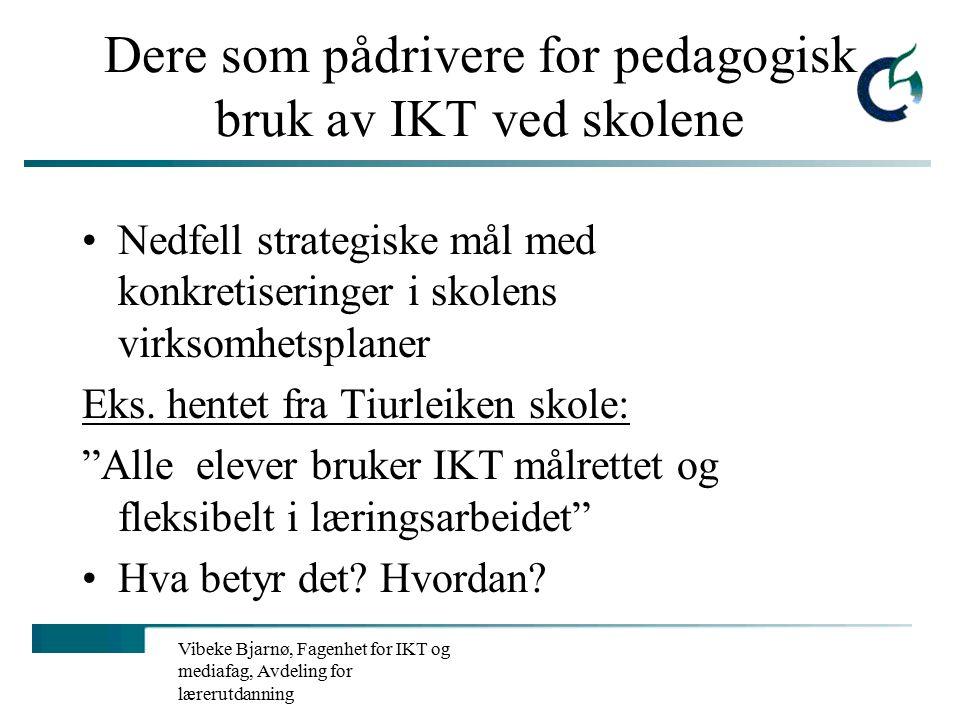 Vibeke Bjarnø, Fagenhet for IKT og mediafag, Avdeling for lærerutdanning LMS fortsettelse… Eks.