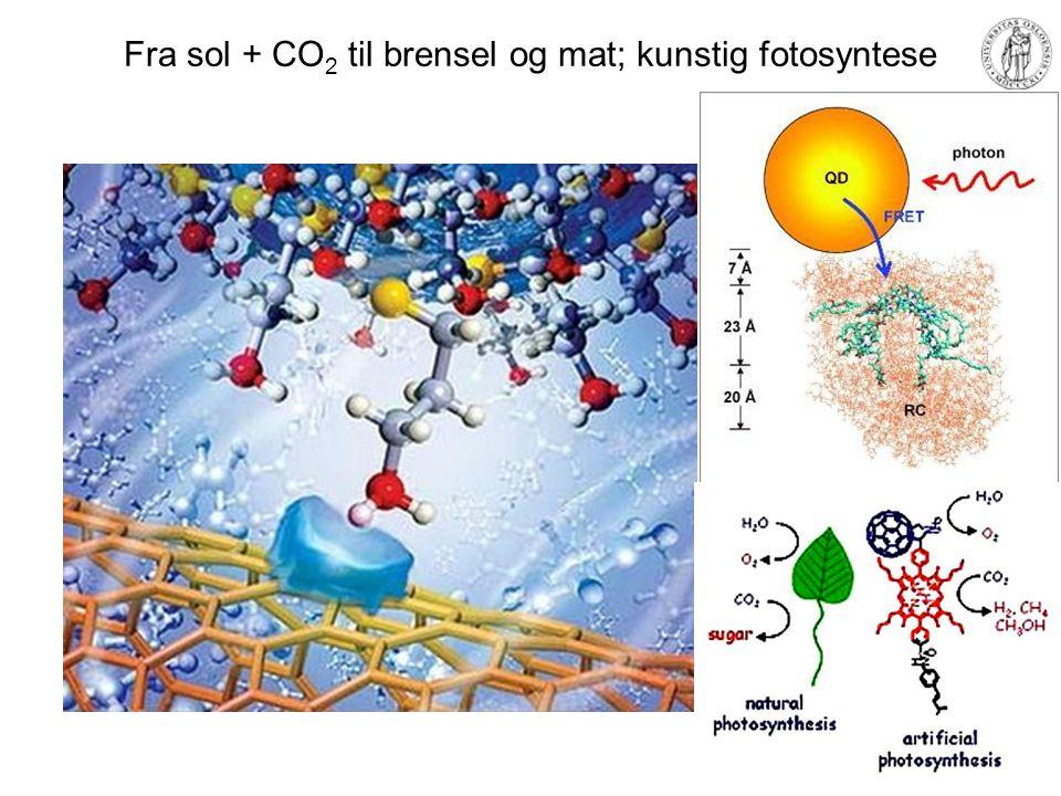 Fra sol + CO 2 til brensel og mat; kunstig fotosyntese