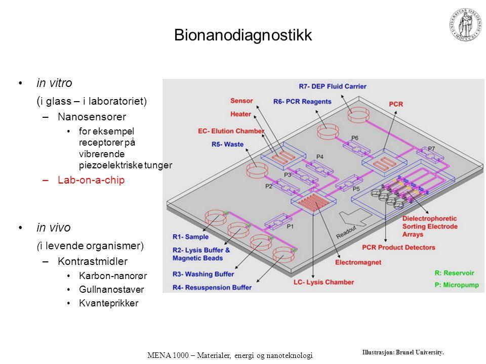 Bionanodiagnostikk in vitro ( i glass – i laboratoriet) –Nanosensorer for eksempel receptorer på vibrerende piezoelektriske tunger –Lab-on-a-chip in v