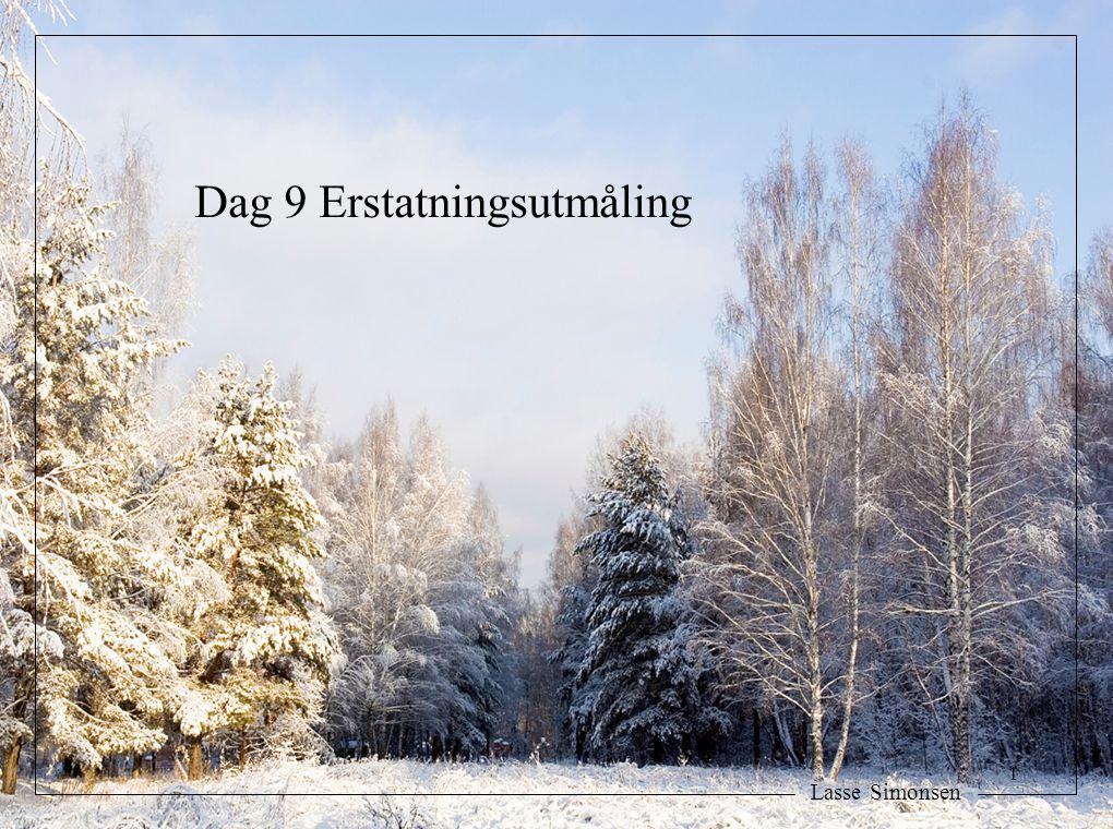 Lasse Simonsen Dag 9 Erstatningsutmåling 1