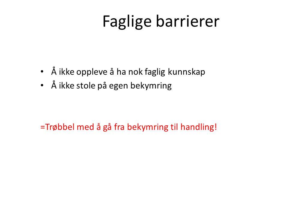 Faglige barrierer Å ikke oppleve å ha nok faglig kunnskap Å ikke stole på egen bekymring =Trøbbel med å gå fra bekymring til handling!