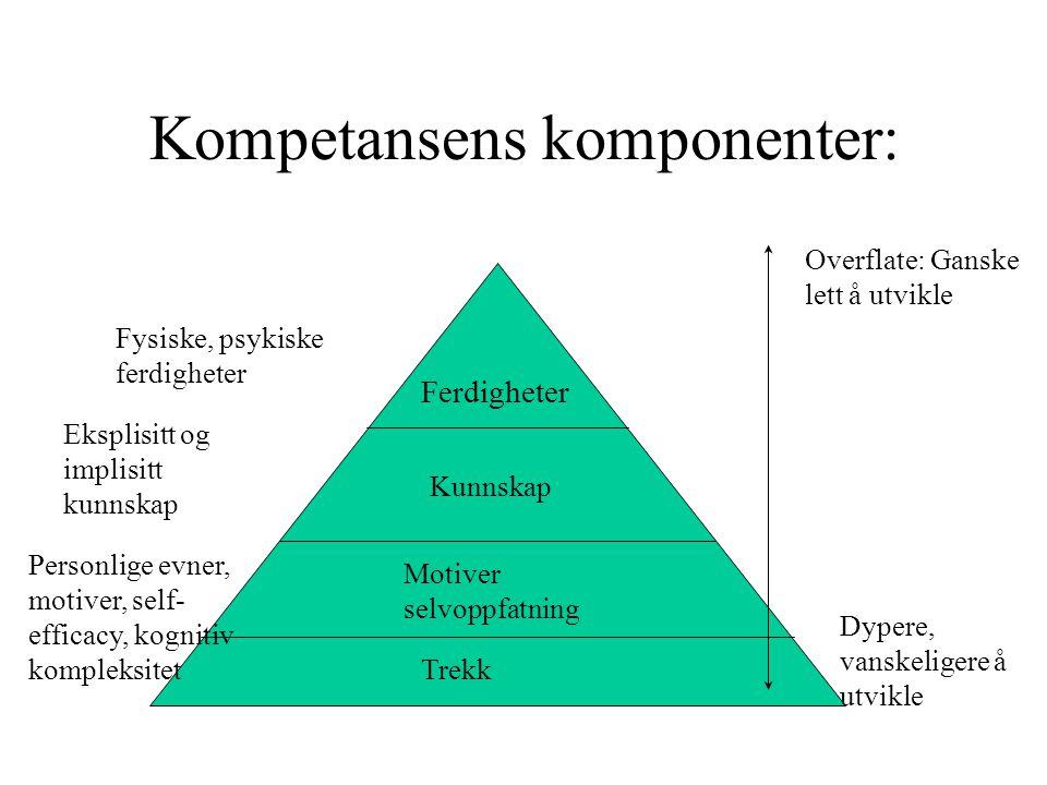 Kompetansens komponenter: Ferdigheter Kunnskap Motiver selvoppfatning Trekk Overflate: Ganske lett å utvikle Dypere, vanskeligere å utvikle Fysiske, psykiske ferdigheter Eksplisitt og implisitt kunnskap Personlige evner, motiver, self- efficacy, kognitiv kompleksitet