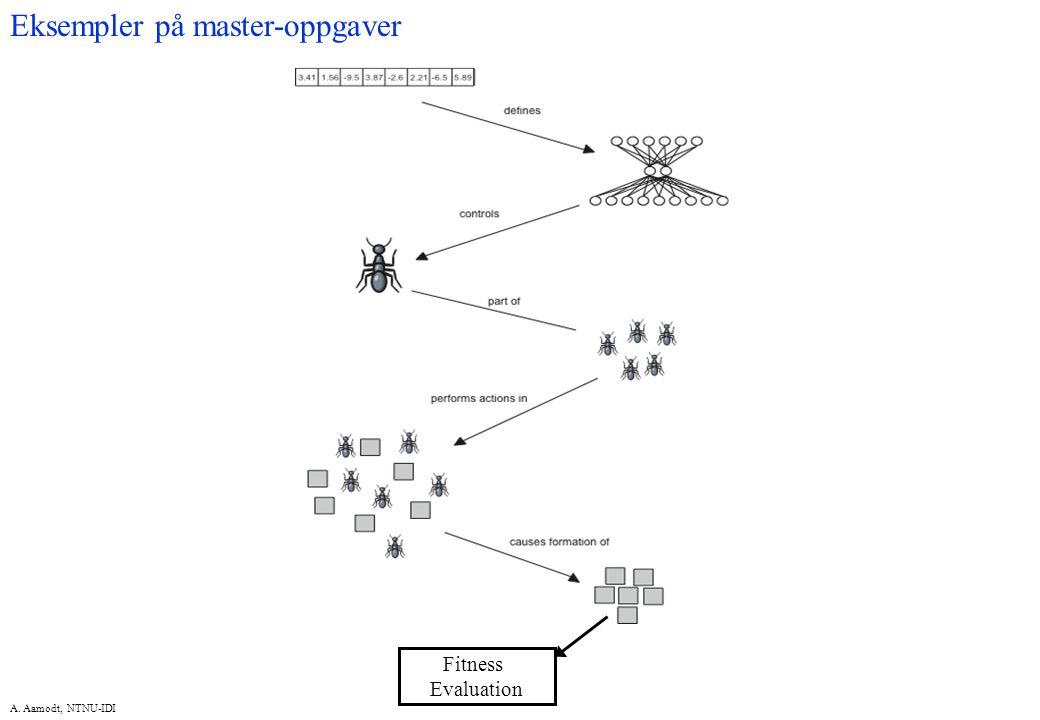 A. Aamodt, NTNU-IDI Fitness Evaluation Eksempler på master-oppgaver