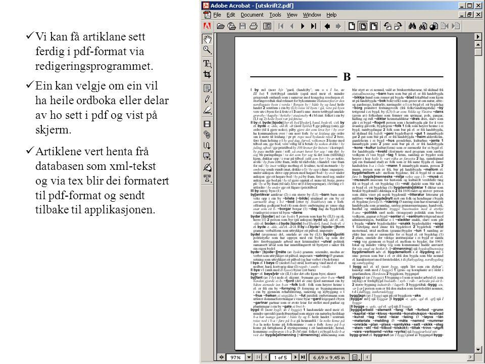 Vi kan få artiklane sett ferdig i pdf-format via redigeringsprogrammet. Ein kan velgje om ein vil ha heile ordboka eller delar av ho sett i pdf og vis