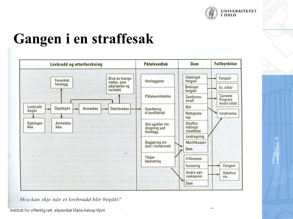 Institutt for offentlig rett, stipendiat Maria Astrup Hjort Gangen i en straffesak