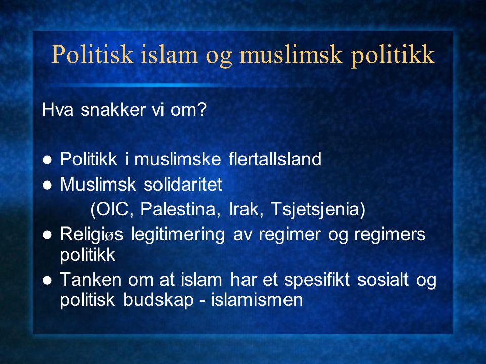 Politisk islam og muslimsk politikk Hva snakker vi om? Politikk i muslimske flertallsland Muslimsk solidaritet (OIC, Palestina, Irak, Tsjetsjenia) Rel