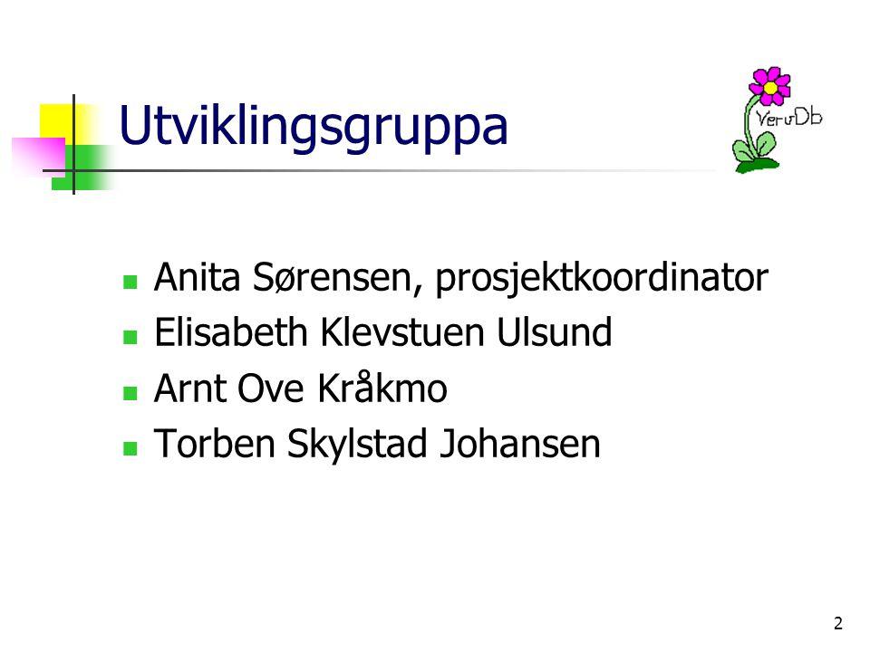 2 Utviklingsgruppa Anita Sørensen, prosjektkoordinator Elisabeth Klevstuen Ulsund Arnt Ove Kråkmo Torben Skylstad Johansen