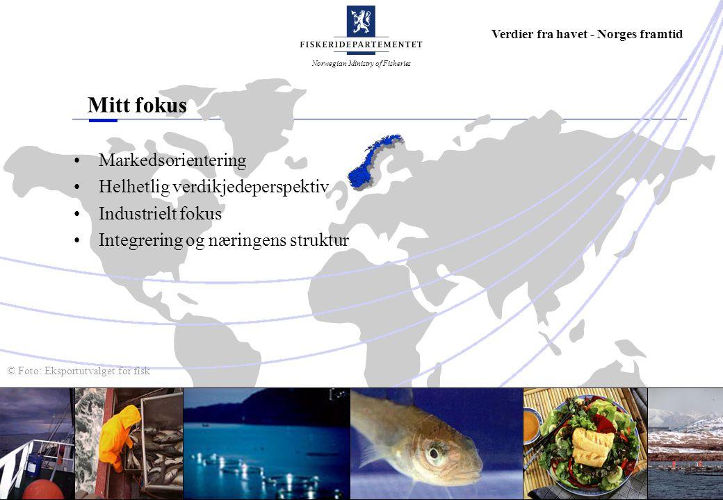 Norwegian Ministry of Fisheries Verdier fra havet - Norges framtid © Foto: Eksportutvalget for fisk Mitt fokus Markedsorientering Helhetlig verdikjedeperspektiv Industrielt fokus Integrering og næringens struktur
