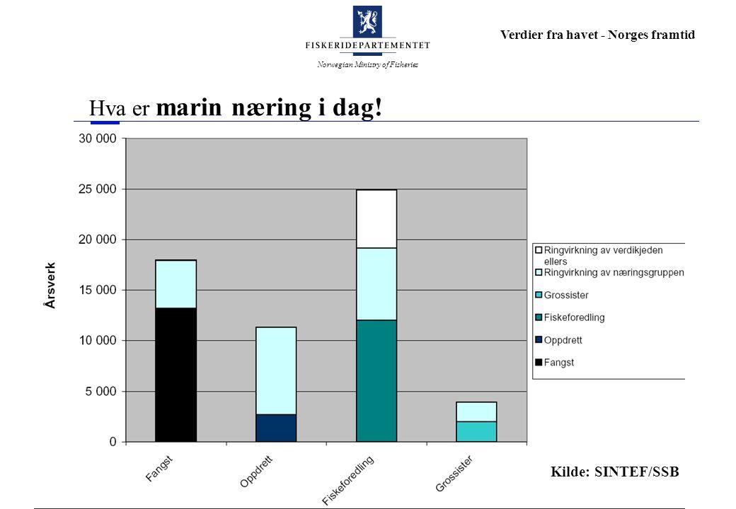 Norwegian Ministry of Fisheries Verdier fra havet - Norges framtid Hva er marin næring i dag! Kilde: SINTEF/SSB