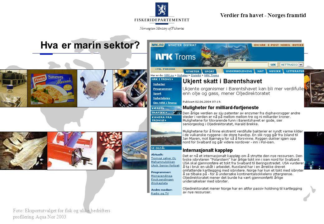 Norwegian Ministry of Fisheries Verdier fra havet - Norges framtid Hva er marin sektor? Foto: Eksportutvalget for fisk og ulike bedrifters profilering