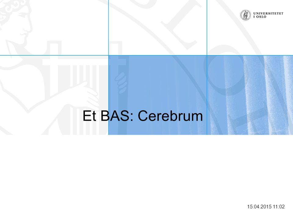 15.04.2015 11:03 Hva er et Brukeradministrative system (BAS) Student register Student register Personal register BAS Personer Brukere