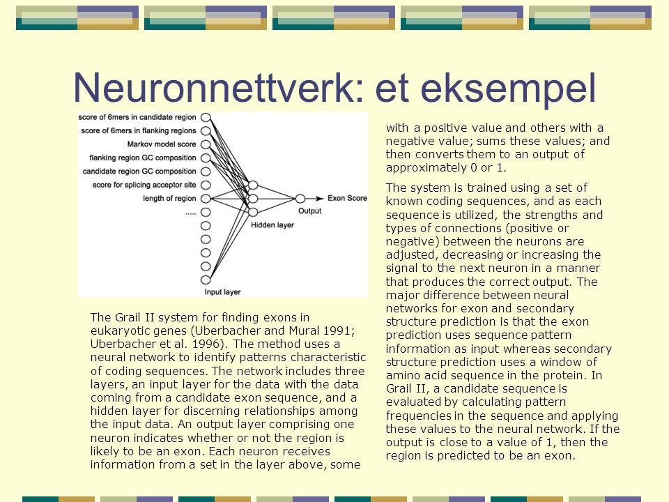 Neuronnettverk: et eksempel The Grail II system for finding exons in eukaryotic genes (Uberbacher and Mural 1991; Uberbacher et al. 1996). The method