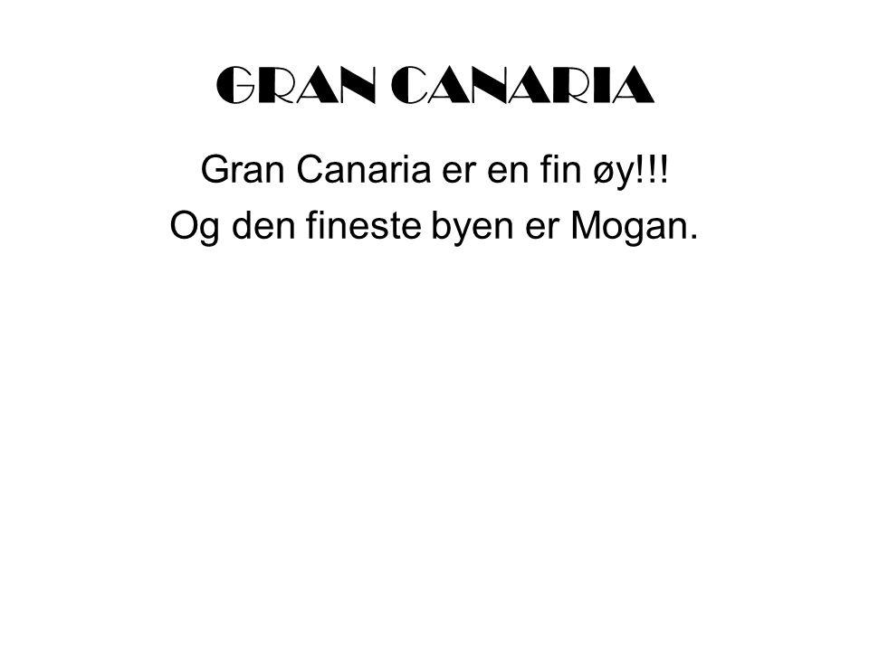 GRAN CANARIA Gran Canaria er en fin øy!!! Og den fineste byen er Mogan.