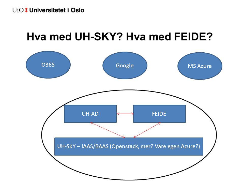 Hva med UH-SKY? Hva med FEIDE? UH-ADFEIDE UH-SKY – IAAS/BAAS (Openstack, mer? Våre egen Azure?) O365 Google MS Azure