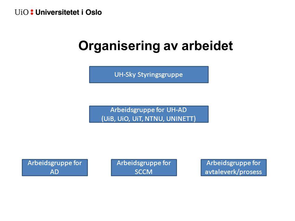 Organisering av arbeidet UH-Sky Styringsgruppe Arbeidsgruppe for UH-AD (UiB, UiO, UiT, NTNU, UNINETT) Arbeidsgruppe for AD Arbeidsgruppe for SCCM Arbe