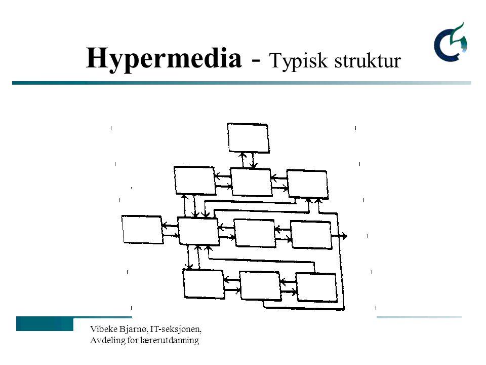 Vibeke Bjarnø, IT-seksjonen, Avdeling for lærerutdanning Hypermedia - Typisk struktur