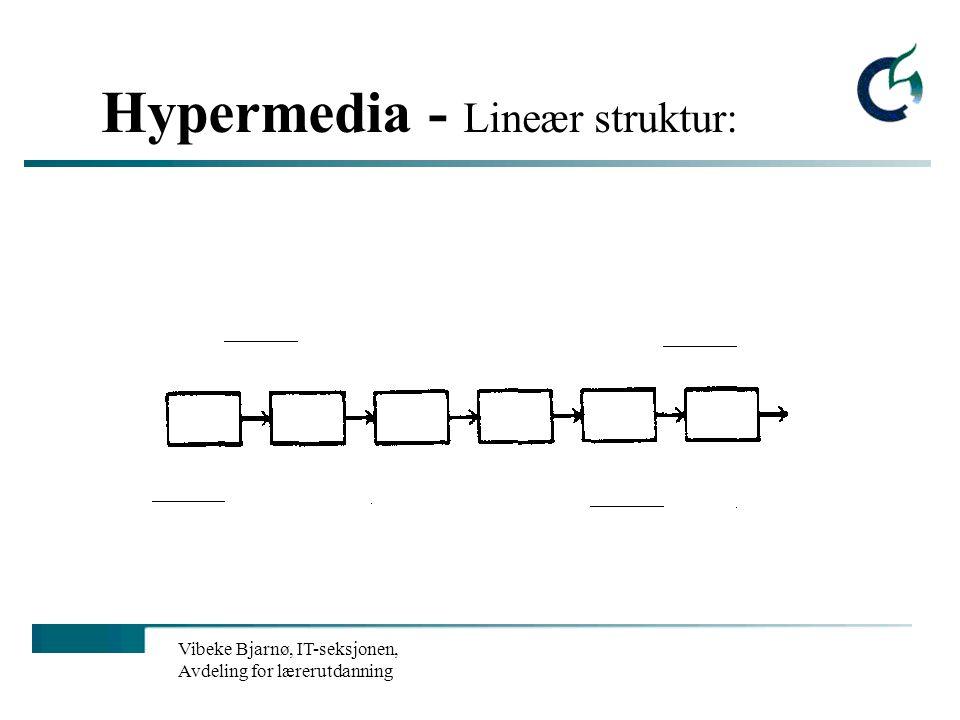 Vibeke Bjarnø, IT-seksjonen, Avdeling for lærerutdanning Hypermedia - Lineær struktur: