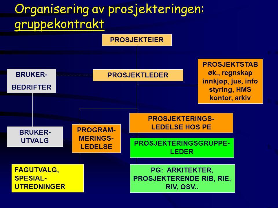 BRUKER- BEDRIFTER BRUKER- UTVALG PROGRAM- MERINGS- LEDELSE FAGUTVALG, SPESIAL- UTREDNINGER PROSJEKTLEDER PROSJEKTEIERPROSJEKTSTAB øk., regnskap innkjøp, jus, info styring, HMS kontor, arkiv PROSJEKTERINGS- LEDELSE HOS PE Organisering av prosjekteringen: gruppekontrakt PROSJEKTERINGSGRUPPE- LEDER PG: ARKITEKTER, PROSJEKTERENDE RIB, RIE, RIV, OSV..