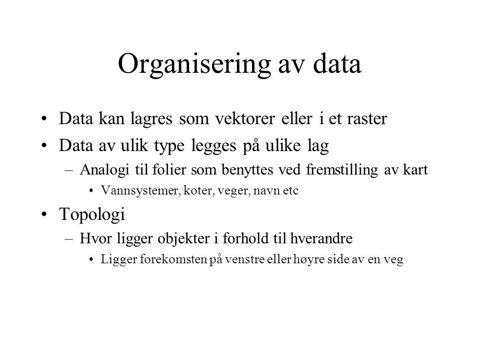 Organisering av data Data kan lagres som vektorer eller i et raster Data av ulik type legges på ulike lag –Analogi til folier som benyttes ved fremstilling av kart Vannsystemer, koter, veger, navn etc Topologi –Hvor ligger objekter i forhold til hverandre Ligger forekomsten på venstre eller høyre side av en veg