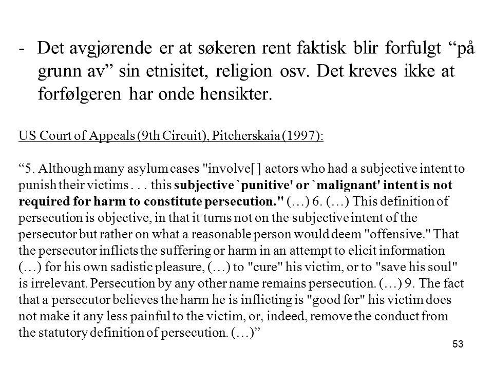 Sosial gruppe -Svensk delegat Petrén på siste konferanse i Genève i juli 1951: …erfaringen har vist at visse flyktninger har blitt forfulgt fordi de tilhører en spesiell sosial gruppe… -Ingen begrunnelse eller veiledning.