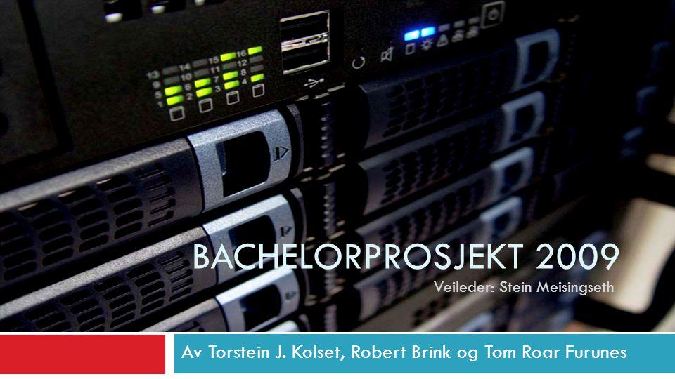 BACHELORPROSJEKT 2009 Av Torstein J. Kolset, Robert Brink og Tom Roar Furunes Veileder: Stein Meisingseth
