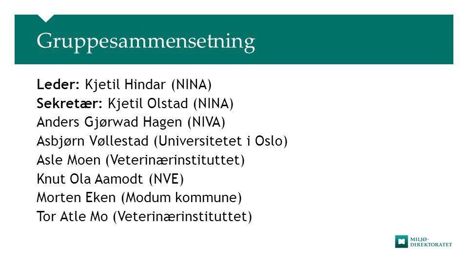 Gruppesammensetning Leder: Kjetil Hindar (NINA) Sekretær: Kjetil Olstad (NINA) Anders Gjørwad Hagen (NIVA) Asbjørn Vøllestad (Universitetet i Oslo) As