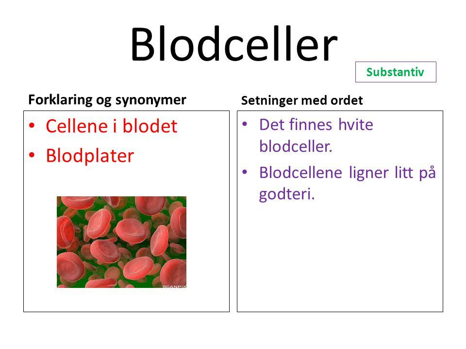 Blodceller Forklaring og synonymer Cellene i blodet Blodplater Setninger med ordet Det finnes hvite blodceller. Blodcellene ligner litt på godteri. Su