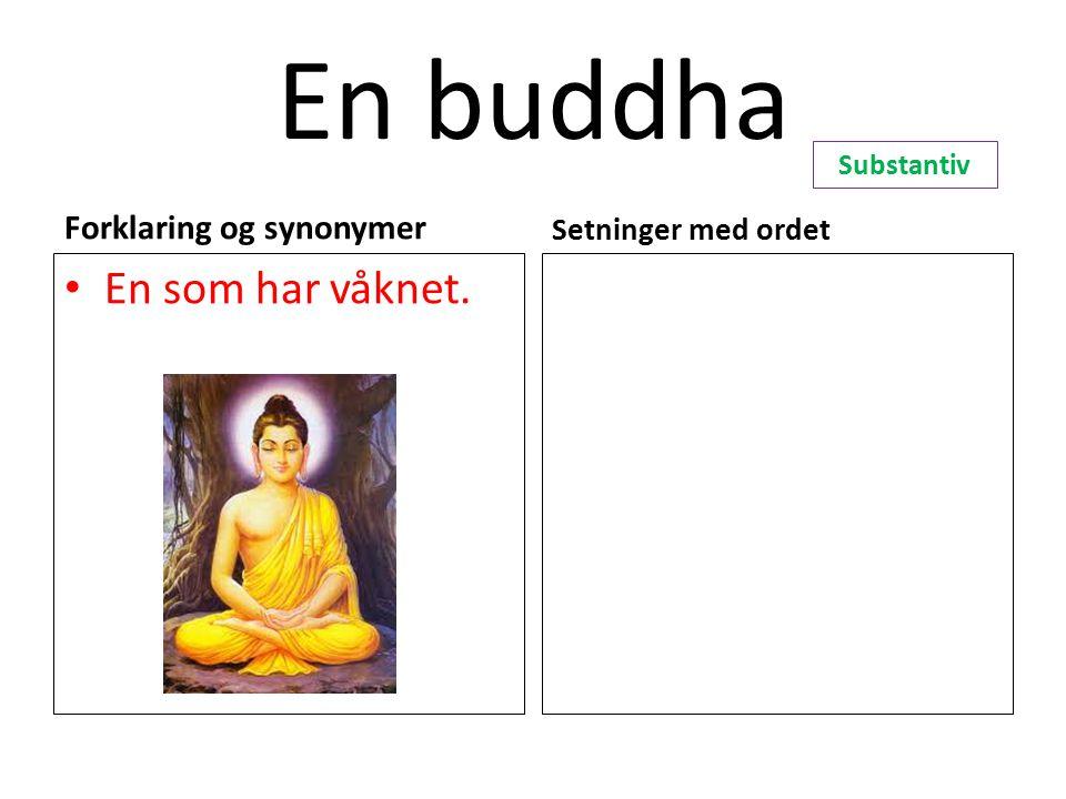 En buddha Forklaring og synonymer En som har våknet. Setninger med ordet Substantiv