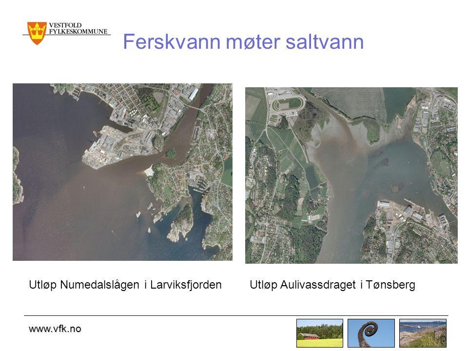 www.vfk.no Ferskvann møter saltvann Utløp Numedalslågen i LarviksfjordenUtløp Aulivassdraget i Tønsberg