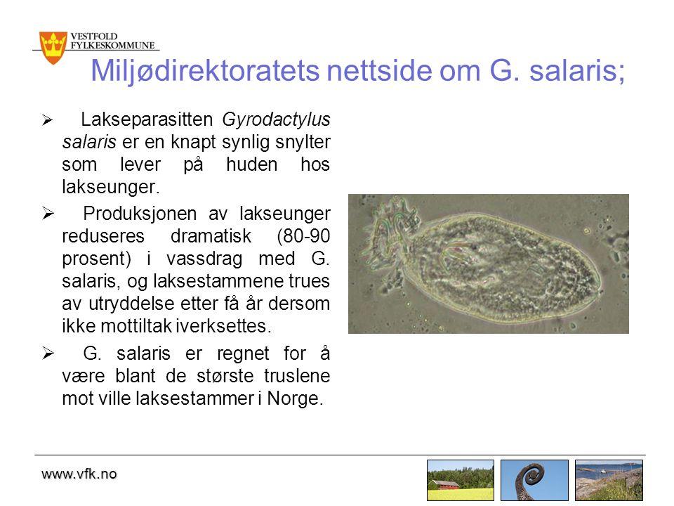 www.vfk.no Miljødirektoratets nettside om G.