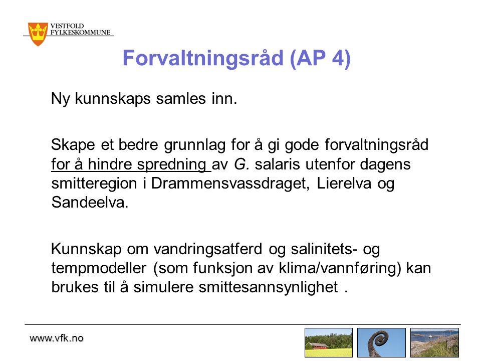 www.vfk.no Forvaltningsråd (AP 4) Ny kunnskaps samles inn.