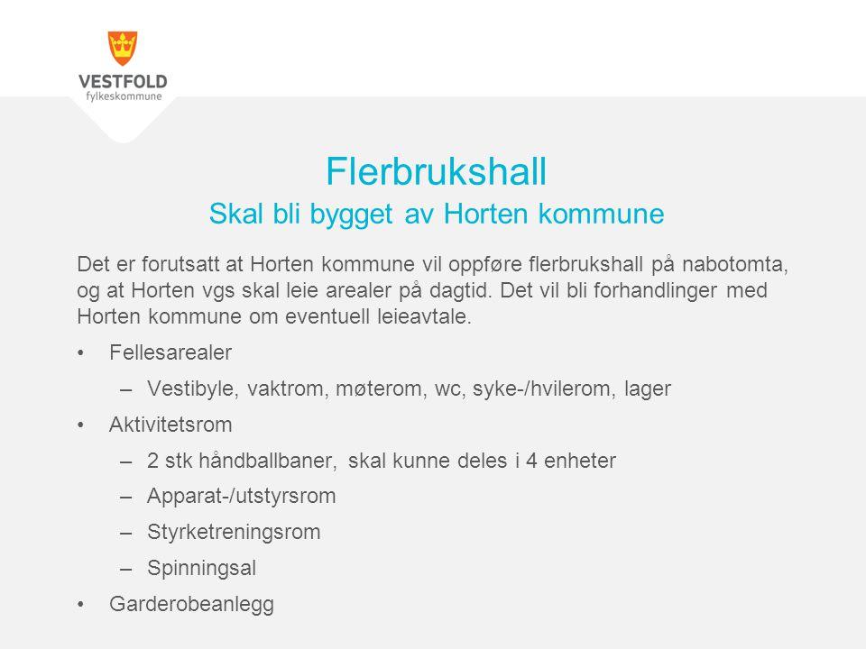 Det er forutsatt at Horten kommune vil oppføre flerbrukshall på nabotomta, og at Horten vgs skal leie arealer på dagtid. Det vil bli forhandlinger med
