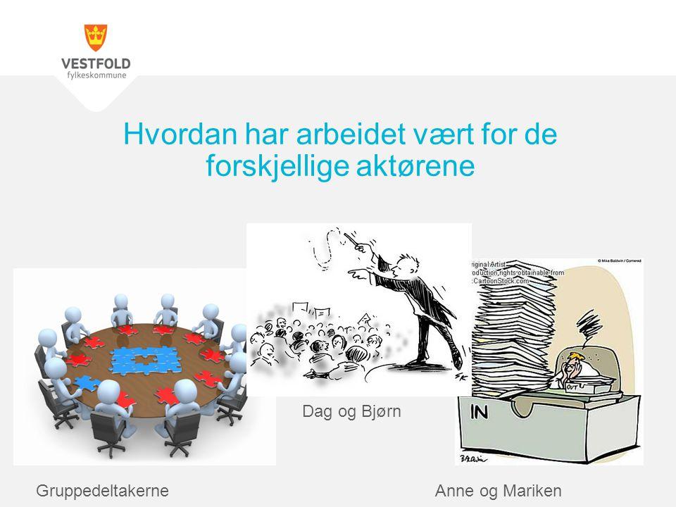 Hvordan har arbeidet vært for de forskjellige aktørene Anne og MarikenGruppedeltakerne Dag og Bjørn