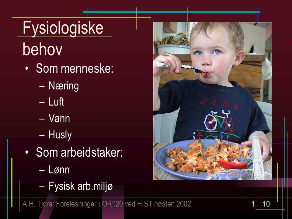 A.H. Tjora: Forelesninger i OR120 ved HIST høsten 2002110 Fysiologiske behov Som menneske: –Næring –Luft –Vann –Husly Som arbeidstaker: –Lønn –Fysisk