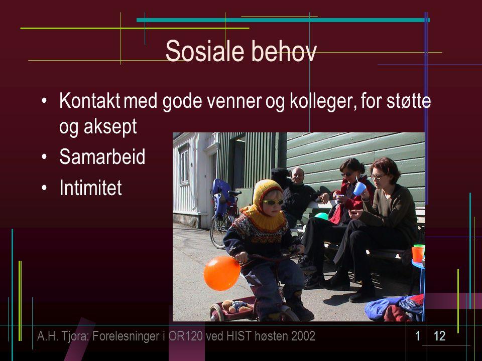 A.H. Tjora: Forelesninger i OR120 ved HIST høsten 2002112 Sosiale behov Kontakt med gode venner og kolleger, for støtte og aksept Samarbeid Intimitet