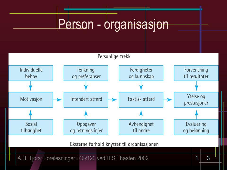 A.H. Tjora: Forelesninger i OR120 ved HIST høsten 200213 Person - organisasjon