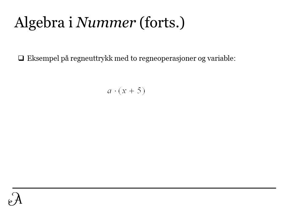 Algebra i Nummer (forts.) En operasjon, ingen bokstaver Flere operasjoner, bokstaver En operasjon, ingen bokstaver Flere operasjoner, men kun konkrete tall Flere operasjoner, bokstaver Nummer: Mest vanlig i Norge: