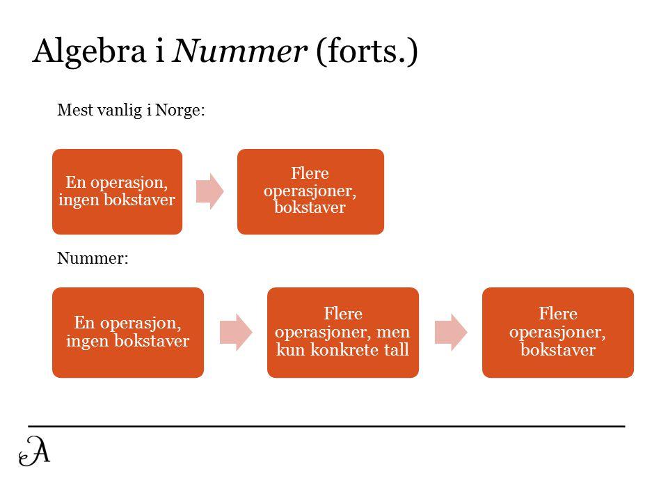 Struktur i Nummer 9 kap 1 (Algebra)  1A handler om «funnet på»-siden av algebra.