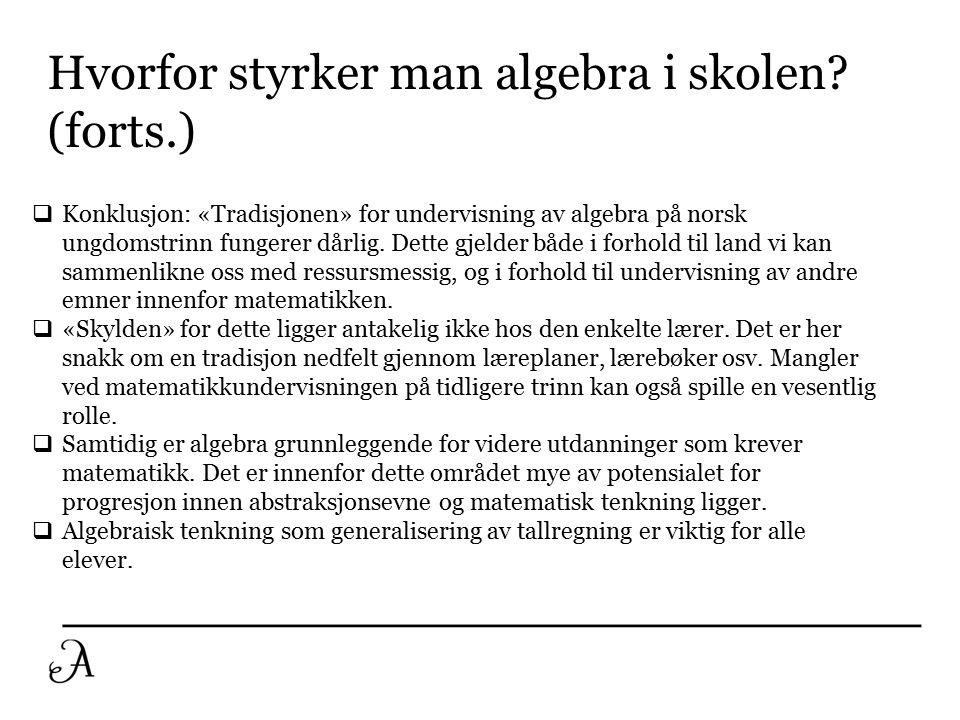 Hva er problemet. Algebra blir for mange norske elever et ganske meningsløst spill med symboler.